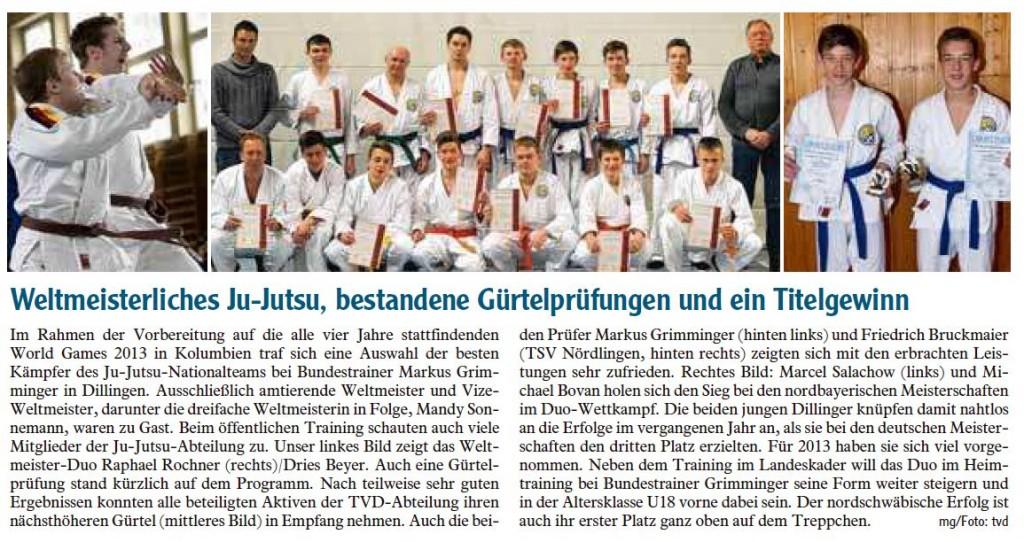 Zeitung_märz_2013